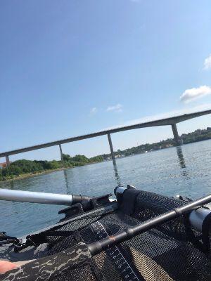 Lystfiskeri på alsund